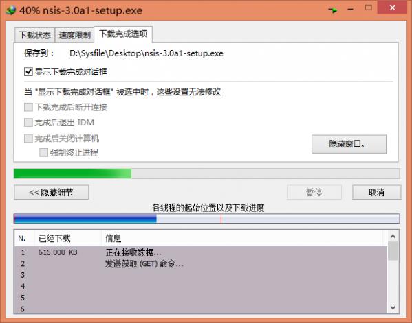 Internet Download Manager (IDM)截图1